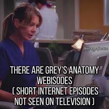 Anatomy Channel Grey U0027s Anatomy Facts News Greysfactts Instagram Photos And