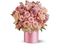 Cheapest Flower Delivery New Orleans Discount Flower Delivery New Orleans Discount Flower