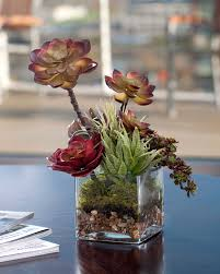 order faux succulent plants at officescapesdirect