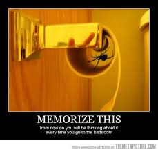 Shower Spider Meme - 113 spider quotes by quotesurf