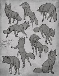 tutorial for drawing dogs art pinterest tutorials dog and draw