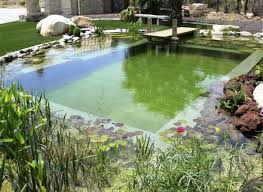 Backyard Pool Cost by Natural Swimming Pool Ideas For Small Backyard Home Interior