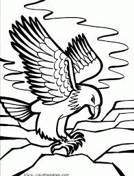 coloring print pages 459 best animals coloring pages images on pinterest coloring