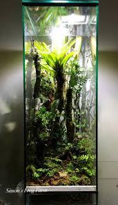 1240 best vivarium terrarium images on pinterest vivarium