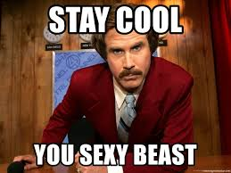 Sexy Beast Meme - stay cool you sexy beast anchor man ron burgundy meme generator