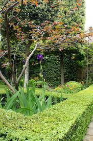 a purple and green planting scheme neisha crosland u0027s spring