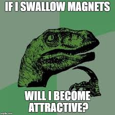 Meme Magnets - philosoraptor meme imgflip