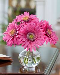 shop silk gerbera daisy accent arrangements at officescapesdirect