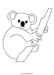 koala bear coloring page koala coloring page coloring page pinterest