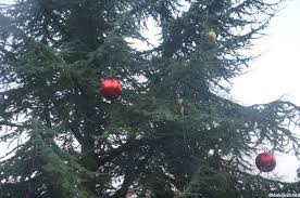 outdoor tree baubles uk alessi santa clause