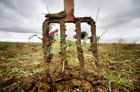 chambre d agriculture cote d or dijon la crise agricole persiste mais des solutions existent