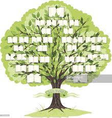 Family Tree Stock Illustrations And Cartoons Getty Images Family Tree Template