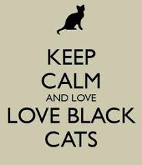 Are Dogs And Cats Color Blind The Art Of Kindness Is Color Blind Black Cats Count Black Cats