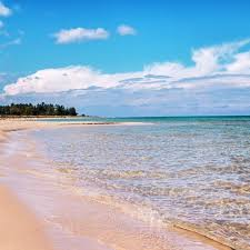 Michigan beaches images 10 beaches that will make you want to plan a trip to the great jpg