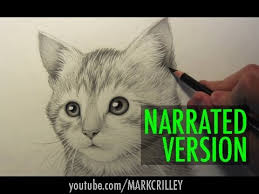 how to draw a kitten narrated step by step youtube