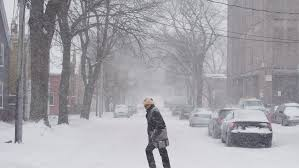 up to 20 cm of snow expected in b c as cold wintry weather