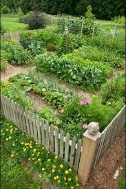 fanciful veggie garden design vegetable plans designs wooden fence