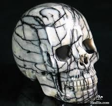 Skull Decor 704 Best Skull Decor Images On Pinterest Skull Art Skull Decor