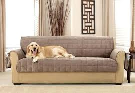 pet sofa covers that stay in place furniture pet covers deep pile velvet furniture cover pet furniture