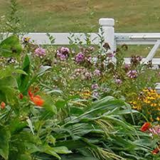 garden planning garden space planning
