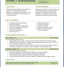 Law Enforcement Resume Template Download Professional Resume Template Haadyaooverbayresort Com