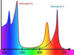 full spectrum light for plants full spectrum led grow lights