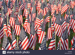 Flag Of Massachusetts Sea Of American Flags Outside The Us National Cemetery In Bourne
