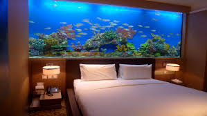 classic photo of fish tank bed headboard pictures jpg diy small