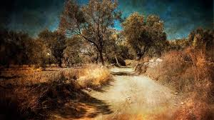 misc country road countryside trees landscape style hd wallpapers