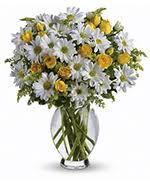 dundalk florist florist flower shop coverage in dundalk ontario on same day