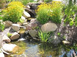 Pond In Backyard by 41 Best Waterfalls And Ponds Images On Pinterest Landscaping