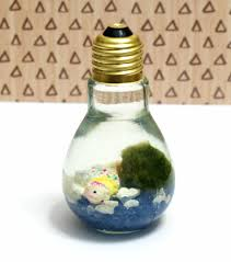 Japanese Gift Ideas Easy Diy Light Bulb Aquarium Marimo Moss Ball Marimo And Diy Light