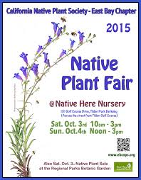 native plant nurseries plant fair 2015 poster and press release native here nursery