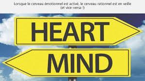 si e des motions dans le cerveau le marketing émotionnel remettre l humain au coeur du marketing