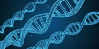free ap biology practice u2013 ap exam practice