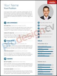 cv performa professional cv â u20ac u201c cv0304 resume examples pinterest resume