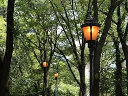 riverside park lights are so they can t be turned pol