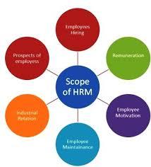 scope of human resource management human resource l concepts l