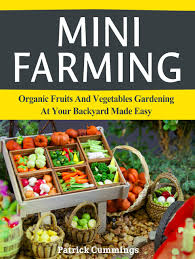 buy mini farming organic fruits and vegetables gardening at your