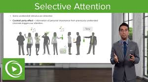 selective attention models u2013 making sense of the environment