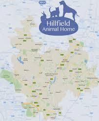 rspca burton branch hillfield animal home