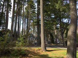 Cottages That Allow Dogs by Pine Grove Cottages Pet Friendly Cottages In Maine