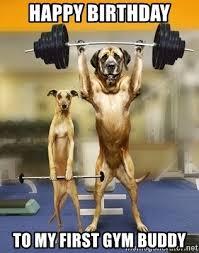 Gym Birthday Meme - happy birthday to my first gym buddy pet fitness meme generator
