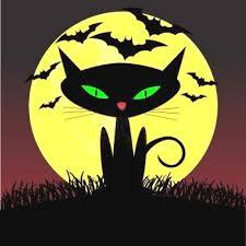 witch pet black cat moon light bats 2 side pillow