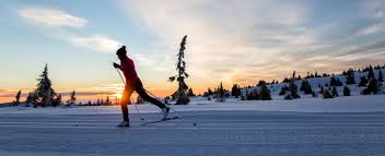 classic skating backcountry cross country skiing styles explained