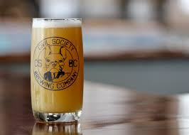 the best beer from each south florida brewery new times broward