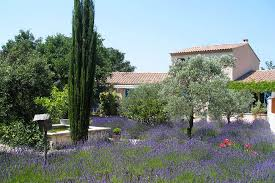 chambres d hotes de charme fayence bed and breakfast provence riviera selected guest room
