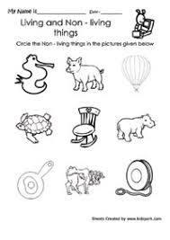 science worksheets activity sheets for kids science tests worksheets