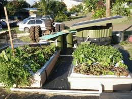 What Is A Backyard Garden What Is Aquaponics Friendly Aquaponics