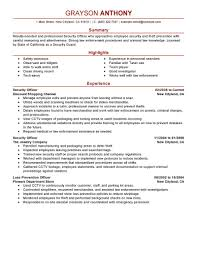 Chief Operations Officer Resume Security Job Description For Resume Free Resume Example And